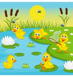 ducklings playing in lake vector image