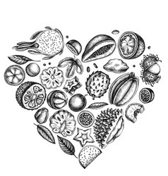 Heart design with black and white papaya guava vector