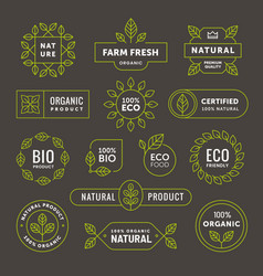 organic linear emblem label badge set vector image