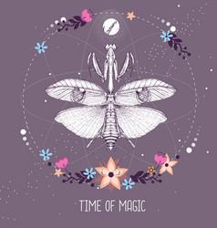 praying mantis on astrology background vector image