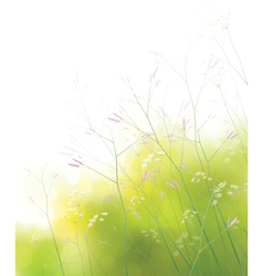 Spring field background vector