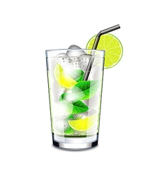 Mojito cocktail isolated on white vector image vector image