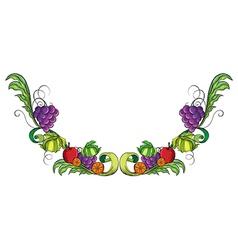 Vine fruit border vector image