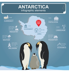 Antarctica south pole infographics statistical vector