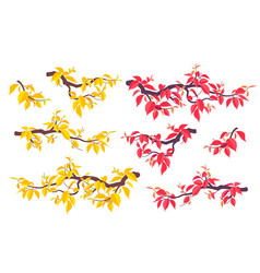 autumn tree branches set flat vector image