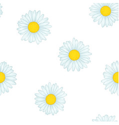beautiful seamless pattern with flowers daisy vector image
