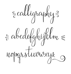 Calligraphy cursive font vector image