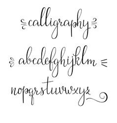Calligraphy cursive font vector