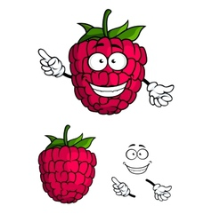 Cute happy smiling cartoon raspberry fruit vector image