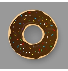 Donut with chocolate glaze isolated on grey vector image