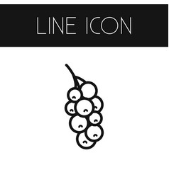 Isolated redcurrant outline currant vector