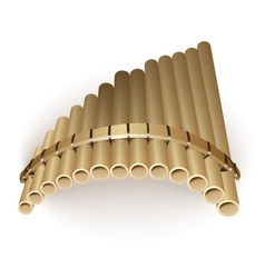 Pan flute vector image
