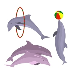 Playful dolphins Dolphin set hand drawn Sea vector image