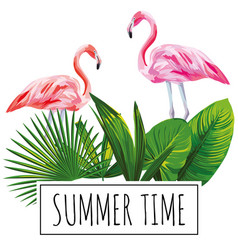 slogan summer time tropical leaves flamingo white vector image
