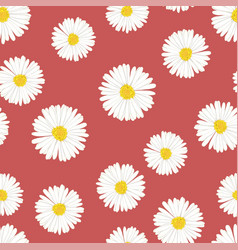 white aster daisy seamless on red background vector image