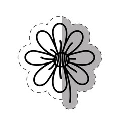 flower garden natural monochrome vector image vector image