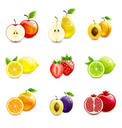 set of bright fruits and their halves vector image