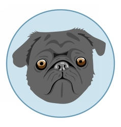Digital pug dog face in blue circle vector image vector image
