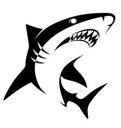 Shark sign vector image