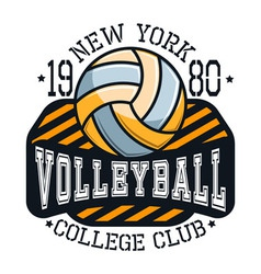 Volleyball College Club New YorkT-shirt Typography vector image vector image