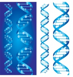 dna chains vector image vector image