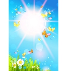 Bright sunshine and butterflies vector image