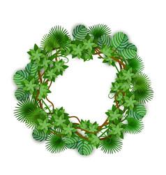 decorative tropical jungle foliage circle wreath vector image