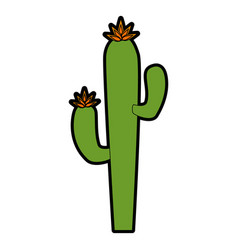 isolated desert cactus vector image