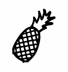 Pineapple freehand vector