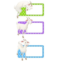 Square tags with white goats vector image