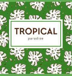 tropical paradise banner monstera leaves seamless vector image