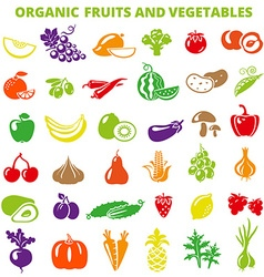 ColorFruitsVegetables vector image vector image