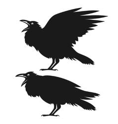Black ravens set vector image