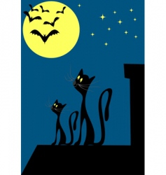 cats on the roof vector image