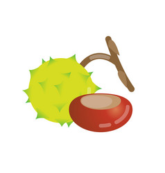 Chestnut icon design vector