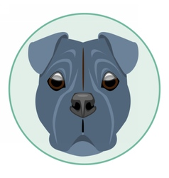 Digital boxer dog face vector