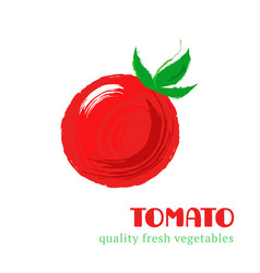 fresh tomato isolated on white background vector image