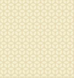 hexagonal pattern vector image