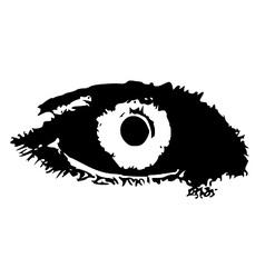 Right eye vector