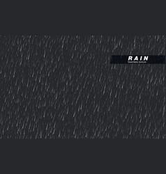 seamless rainfall texture rain drop isolated on vector image