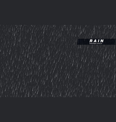 seamless rainfall texture rain drop isolated vector image