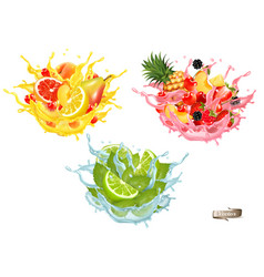 set fruit juice splash whole and sliced pineap vector image