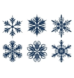 Set of 6 snowflakes vector image