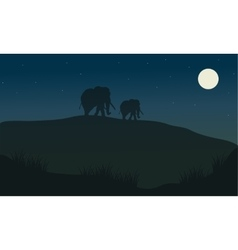Silhouette oof elephant at the night vector