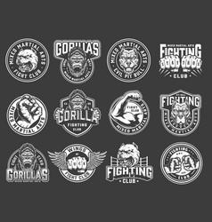 Vintage mixed martial arts club emblems vector