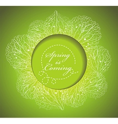 Fresh spring background with grass and flowers vector image vector image