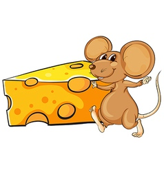 a brown mouse beside the big slice of cheese vector image