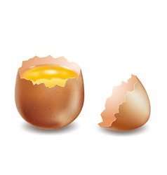 Brown broken eggs on white background vector