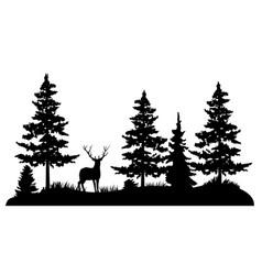 Deer in a pine forest vector