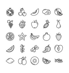 set of icons with different fruits vector image